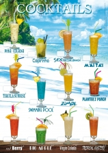 Poster A1 - 12 Cocktails